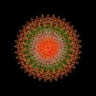 avatar for nag4