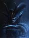avatar for aliendestroya