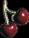 avatar for YumYum69