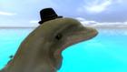 avatar for HailleA