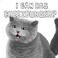 avatar for iRebeccaBo