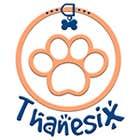 avatar for thanesix
